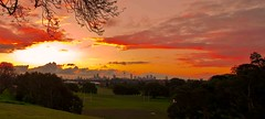 Queen's Park Sunday (Typemutha) Tags: new sunset favorite art skyline wales john landscape ma photography photo search artist artistic dusk top unique south sunday review sydney champion picture award australia best professional most excellent species prize favourite p