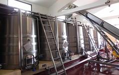 Uruguay: Acreditación del Inavi sitúa mejor a los vinos uruguayos en el mundo