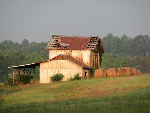 Barn in Early Morning Light
