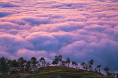 The Sunrise in Nagarkot (Anton Jankovoy (www.jankovoy.com)) Tags: nepal mountains sunrise himalayas nagarkot