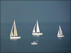 2 Peregrinacin Martima Costa de Lugo (celicom) Tags: navegar foz regata veleros ribadeo clubnutico diputacindelugo veraneaenlugo 2peregrinacinmartimacostadelugo