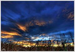 Alberta's Sky (Artvet) Tags: