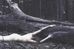 sleep (Rebecca Nathan) Tags: