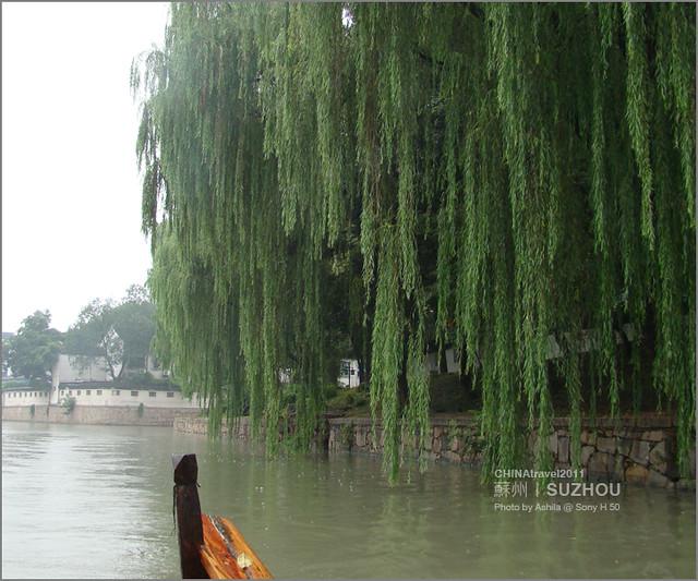 CHINA2011_305