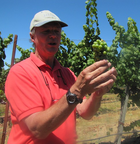 Ridge Watson discusses the varietals used at Joullian