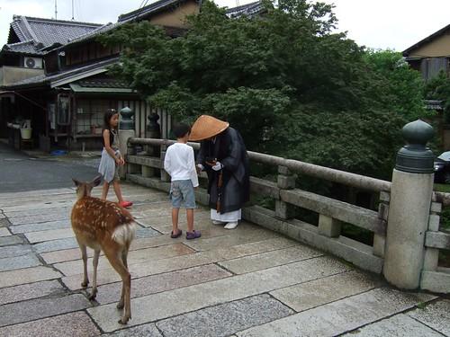 1131 - 21.07.2007 - Nara