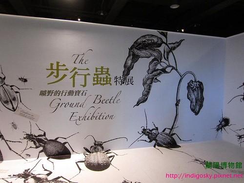 蘭陽博物館-IMG_2182W