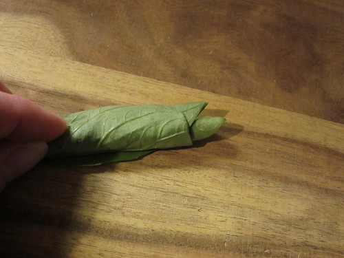 rolled up basil leaves