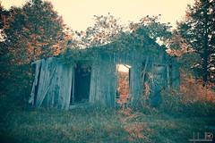 Tennessee Barns (rschwandt) Tags: barn rural decay farm tennessee country barns farms countrylife