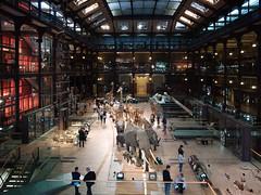 Grande galerie de l'volution, Paris (leroyo) Tags: paris lumix raw panasonic f25 14mm gf1 rpp grandegaleriedelvolution