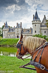 Chteau de Sully sur Loire (Oric1) Tags: blue horse france water clouds de cheval interesting eau fuji bleu most ciel sur fujifilm sully nuages loire chteau loiret x100 douves attelage sange francelandscapes oric1 leuropepittoresque