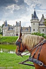 Chteau de Sully sur Loire (Oric1) Tags: blue horse france water clouds de cheval interesting eau bestof fuji bleu most ciel mostinteresting sur fujifilm sully nuages loire chteau loiret 2011 x100 douves attelage sange francelandscapes oric1 leuropepittoresque