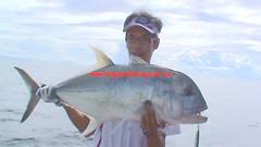20100715 (fymac@live.com) Tags: mackerel fishing redsnapper shimano pancing angling daiwa tenggiri sarawaktourism sarawakfishing malaysiafishing borneotour malaysiaangling jiggingmaster