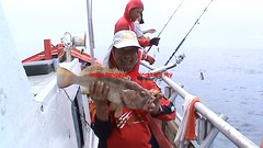 20100746 (fymac@live.com) Tags: mackerel fishing redsnapper shimano pancing angling daiwa tenggiri sarawaktourism sarawakfishing malaysiafishing borneotour malaysiaangling jiggingmaster