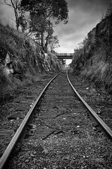 Railway Cutting (andrewfuller62) Tags: bw mono tracks rail railway australia cutting tasmania disused westerway nikond300 nikoncapturenx2 niksilverefexpro nikkor1735mmf28ded adobephotoshopcs5