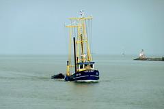 Enkhuizen  Fishing ship EH-49 (Michiel2005) Tags: holland netherlands boot boat ship nederland enkhuizen noordholland schip fishingship westfriesland vissersschip eh49 enkhuizen49