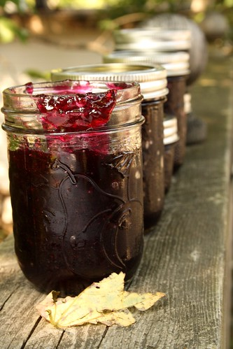 We Sure Can's Vanilla Blueberry Jam