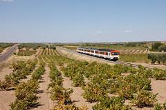 Regional por Tierra de Barros (Nohab0100) Tags: train tren viña wine railcar vinha camello comboio renfe extremadura automotora 592 cochemotor villafrancadelosbarros