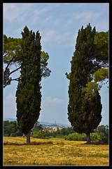 La porta (Symoncorv) Tags: door trees field reflex puerta nikon arboles d70 campagna porta campo abbadia abbazia abadia cipressi abbadiadifiastra alebri