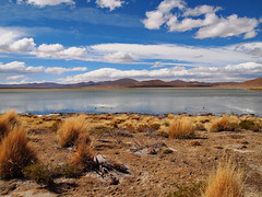 Lake-Valle De Rocas-Uyuni-Bolivia (mikemellinger) Tags: lake reflection southamerica nature beauty clouds landscape scenery rocks tour bolivia uyuni rockvalley vallederocas