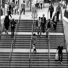 Quicker by rail (Ian Humes) Tags: people urban blackandwhite bw blackwhite steps belfast northernireland biancoenero blancinegre noireblanc cccl canon50d