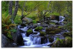 Riu de Rialp en HDR (Principat d'Andorra) (kike.matas) Tags: nature rio canon agua sigma paisaje bosque otoo soe hdr andorra largaexposicin andorre photomatixpro kartpostal bej fineartphotos golddra