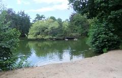 2011_06_240099 (Gwydion M. Williams) Tags: park summer june germany deutschland hessen frankfurt parks botanicgarden frankfurtammain publicgardens hesse palmgarden
