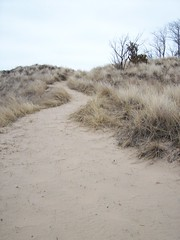 Kemil Beach Trail - Steepest Incline (Zoesdare) Tags: statepark sky nature clouds sand dunes indiana lakemichigan kemilbeach dunesnationallakeshore