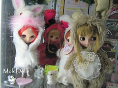 Blythe Dolls as a Lovely Bunnys in Tokyo ♥♥♥