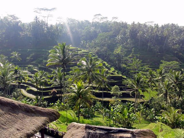 Uitzicht onderweg naar Kintamani