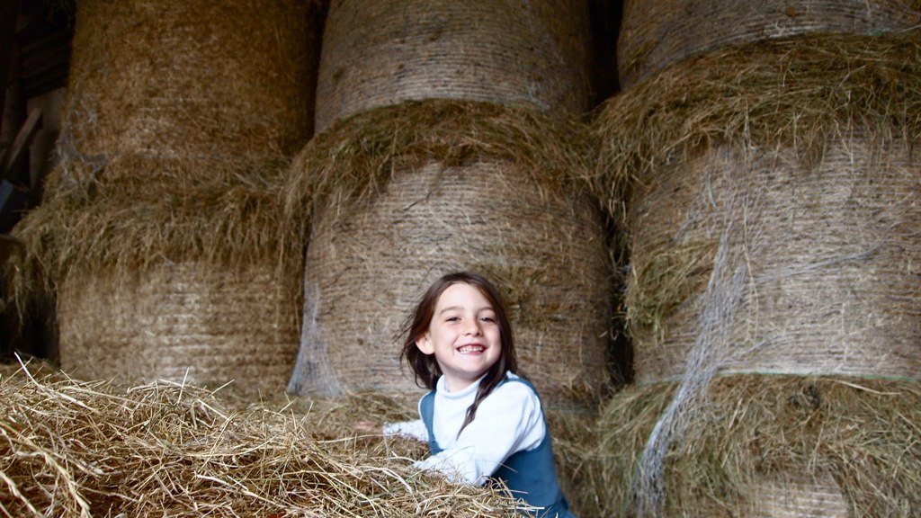 The World S Newest Photos Of Farmgirl And Hay Flickr
