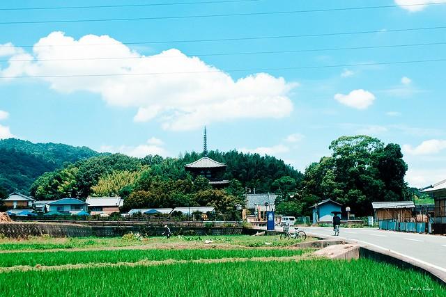 奈良的鄉間小路