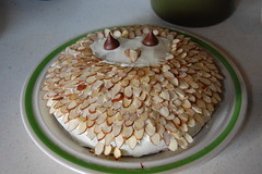 the owl cake (Stephanie Caldwell) Tags: