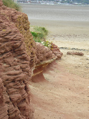 Hilbre Island 02 (Chrissy Lewis' Flickr) Tags: shells beach sand rocks cheshire wirral worldphotographyday hilbreisland