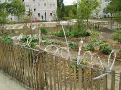 Le Jardinet 4