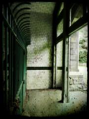 Horror Asylum