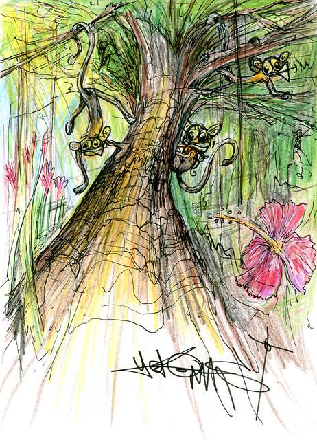 Apor i träd