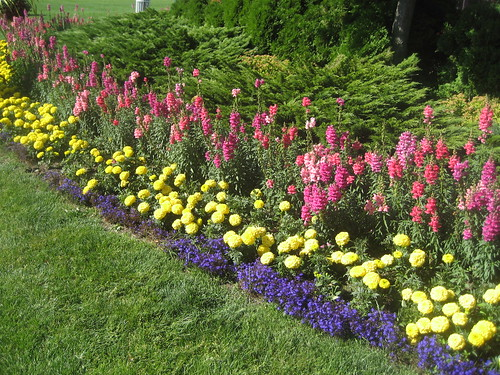 Three-tiered border planting