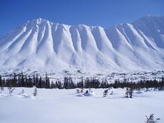 Yukon 32