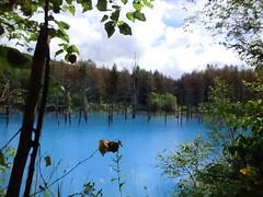 青い池、アルミニウムが溶け込んで青いそうです。
