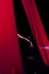 High Art (EIU) Tags: dance illinois theater performing arts charleston acrobatics perform acrobats performers eastern highart rehearse eiu easternillinoisuniversity easternillinois doudna doudnafineartscenter jaygrabiec pendulumaerialarts