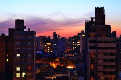 """""""Atardece en la ciudad (8)"""" (Marcelo Savoini) Tags: city argentina atardecer 50mm nikon dusk ciudad rosario 18d d7000"""
