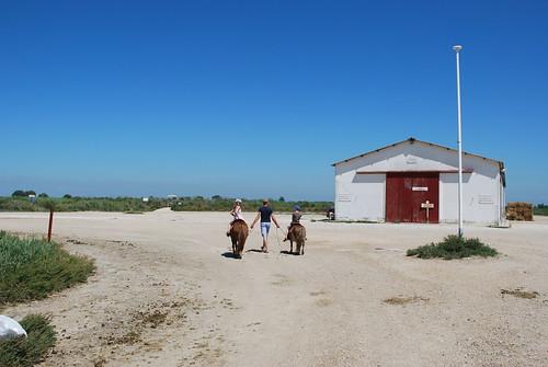 Zuiden van Frankrijk 2011 (83)