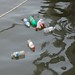 Please make sure your bottles don't end up in the Potomac!