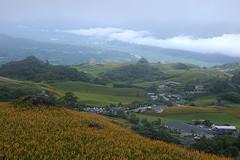 IMGP8437 (Rick.Ying) Tags: taiwan hualien sixtystonemountain goldenneedles fulitownship jhutianvillage
