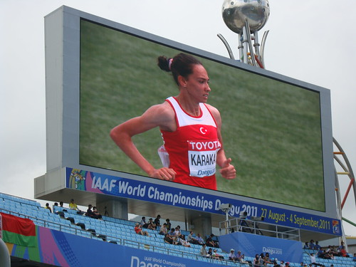 world athletics championship 2011