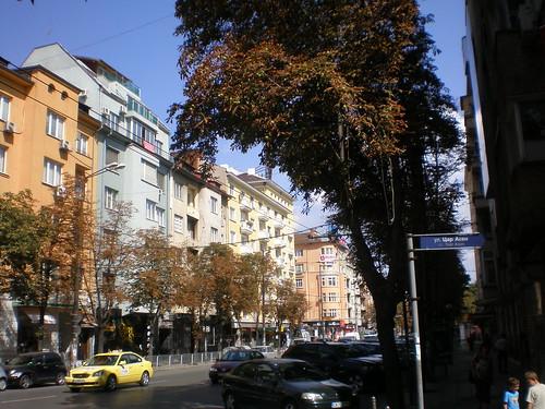 Dense Urban Street in Sofia, Bulgaria