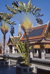 85-Bangkok-Temple of Emerald Buddha (hjfklein) Tags: leica thailand temple bangkok buddha emerald m2 internationalgeographic earthasia hjfklein