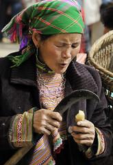 27_LAO72810051 (TC Yuen) Tags: vietnam sapa hmong terracefarming locai