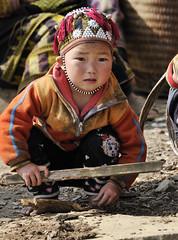 81_LAO75520104 (TC Yuen) Tags: vietnam sapa hmong terracefarming locai